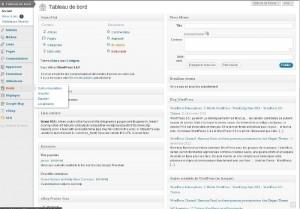 Un site pro doit être traduit, le plugin Codestyling Localization traduit thèmes et plugins WordPress