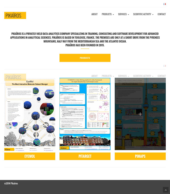 Site de consulting Pikairos